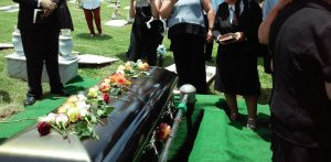 butterfly funerals ltd